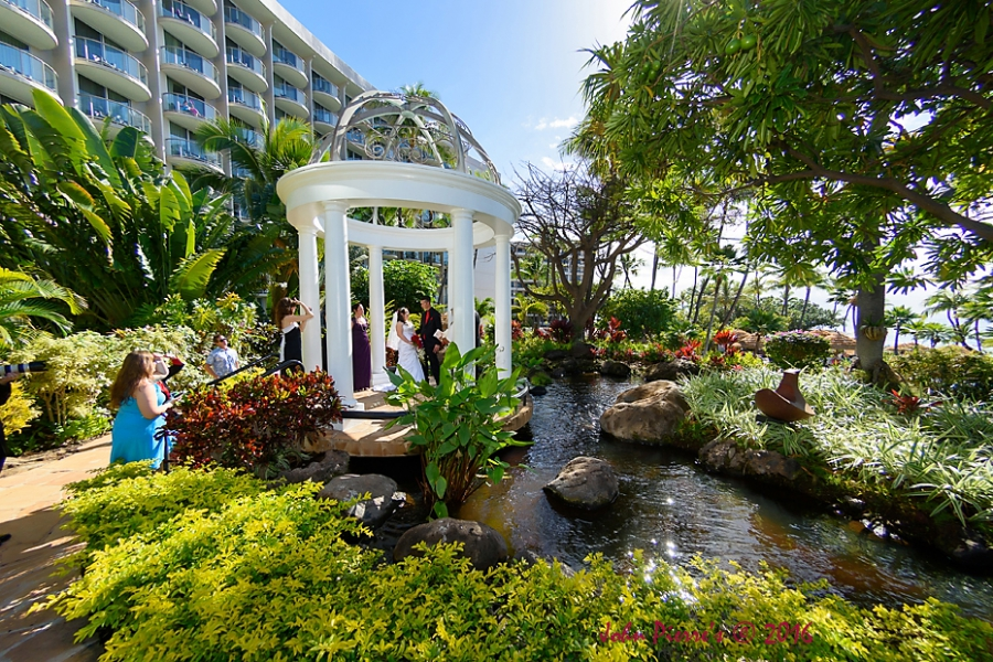 Westin Maui Wedding Photography Love On An Island